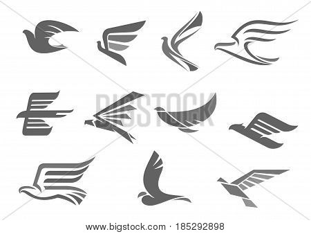 Bird with spread wings or birds flying vector icons set. Isolated symbols of dove, hawk or eagle bird in flight for company or brand corporate and business identity premium template