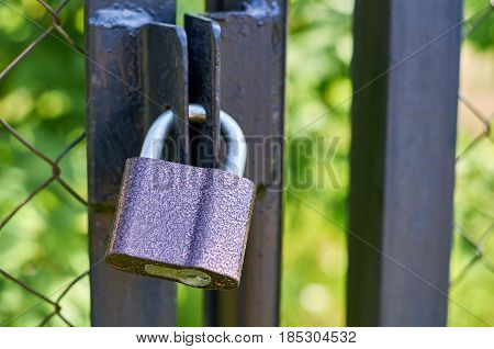 A Powerful Padlock Hanging On The Closed Doors