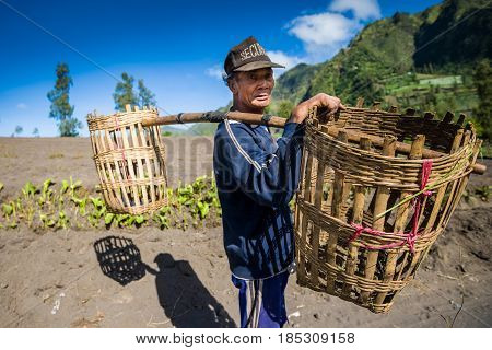 East Java,indonesia-may 05 : Native Indonesian Planter In Village Near Mount Bromo In Bromo Tengger