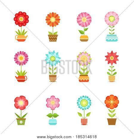 Vector flowers in different pots. Floral set isolate on white background. Color flowers plant, illustration of garden flowers in pot