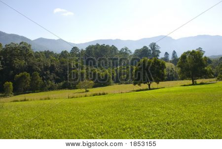 Field And Mountains In The Promised Land