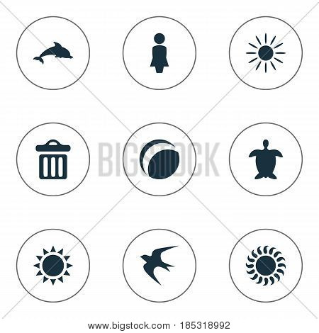 Vector Illustration Set Of Simple Beach Icons. Elements Beach Games, Tortoise, Garbage And Other Synonyms Games, Heat And Swallow.