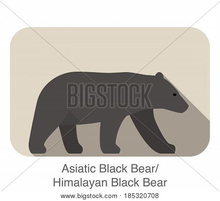 Asiatic Black Bear Walking Side Flat 3D Icon Design