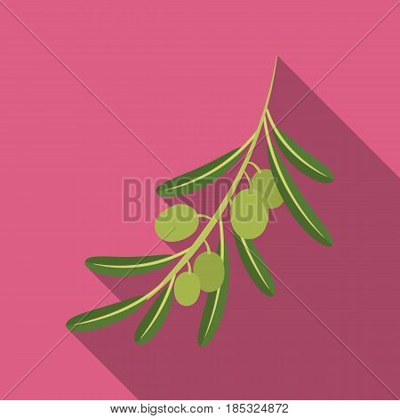 Olive branch.Olives single icon in flat style vector symbol stock illustration .
