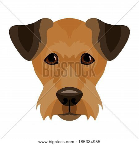 Vector airedale terrier dog face icon symbol of new 2018 year