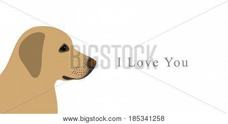 Labrador Retriever Or Golden Retriever, Colors, Vector