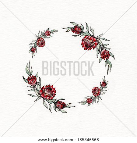 Watercolor wreath with leaves and flowers of protea. Used for wedding invitation, greeting cards