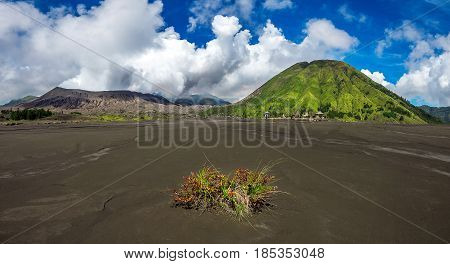 Mount Bromo Volcano (gunung Bromo)in Bromo Tengger Semeru National Park, East Java, Indonesia.