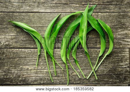 Ramson or wild garlic leaves on old wooden table. Top view.