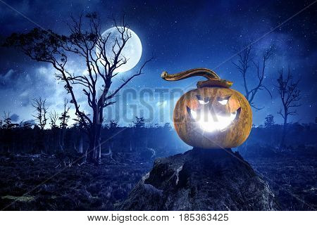 Mystery of Jack pumpkin