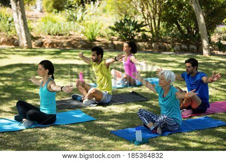 Group of people performing yoga in the park on a sunny day