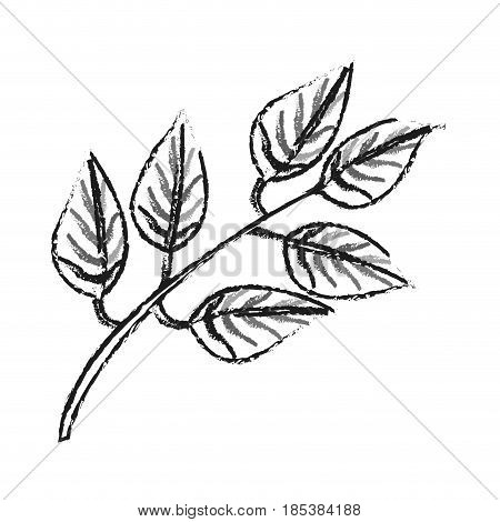 blurred silhouette image side view branch with ramifications and leaves vector illustration