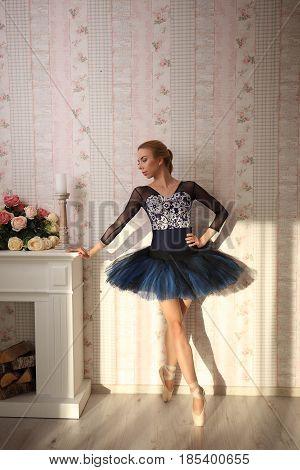 Portrait Of A Professional Ballet Dancer In Sun Light In Home Interior. Ballet Concept.