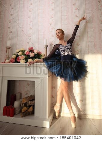 Portrait Of A Ballerina In Sun Light In Home Interior. Ballet Concept.