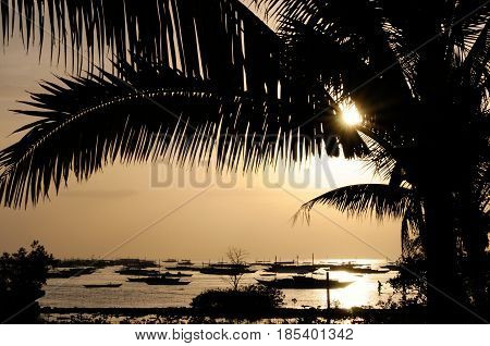 Golden sunset on Danao beach with boats anchored in a harbor, Panglao, Philippines