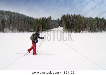 Novice Cross Country Skier