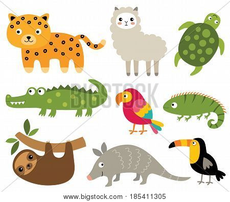South American animals set (jaguar, crocodile, sloth, turtle and other)