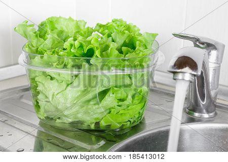 Fresh Lettuce Leaves Soaked In Transparent Plastic Bowl