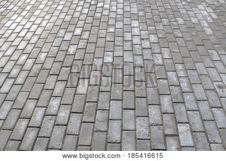 The Pavement Of Gray Paving Stones