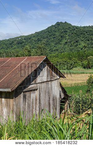 Old Wood Farm House