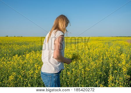 Girl, Blonde Collects Yellow Flowers In A Field Under A Blue Sky