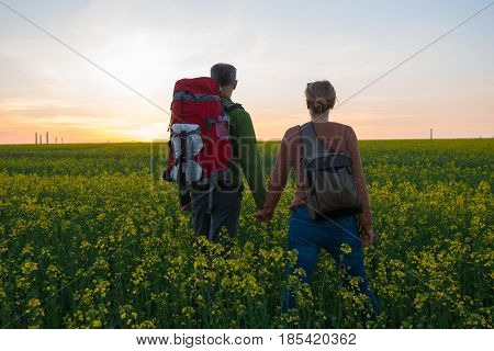 Couple Of Travelers With Backpacks Stand In A Field Of Yellow Flowers
