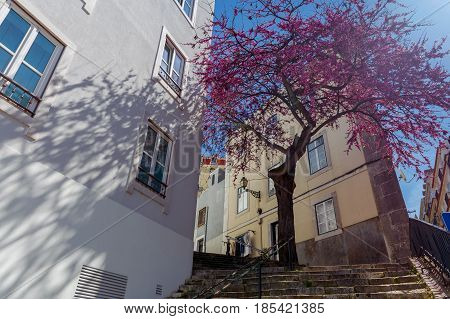 Old streets in the historical part of Lisbon Alfama. Portugal.
