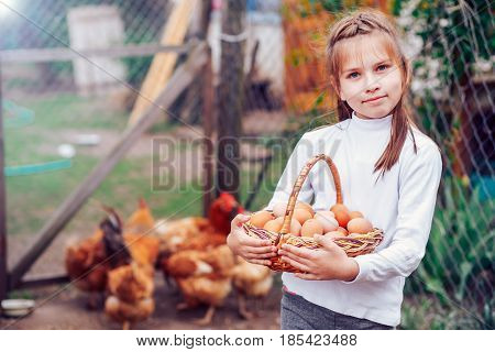 beautiful little girl holding a basket full of eggs on the farm