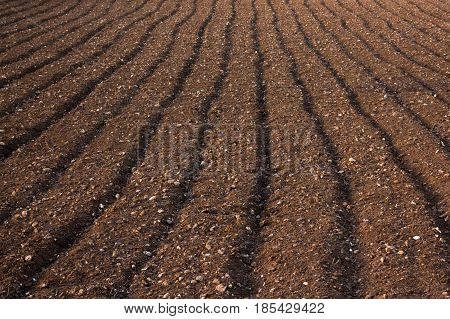 Close up abstract of ploughed soil in a field in Malta