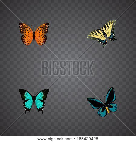 Realistic Checkerspot, Danaus Plexippus, Demophoon And Other Vector Elements. Set Of Beautiful Realistic Symbols Also Includes Orange, Fly, Blue Objects.