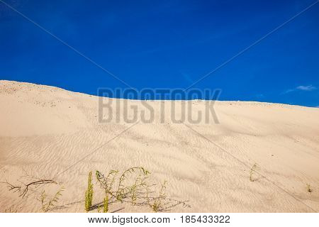 Desert with sky and  clouds