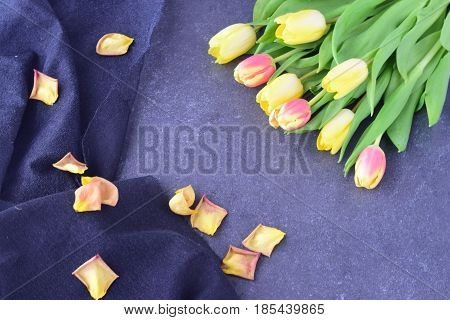 Bouquet of rosy and yellow tulips on a black abstract background, with dry petals. Space for text. Romance concept
