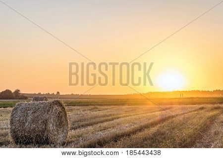 Wheat field after harvest with straw bale in light of the low evening sun backlight. Field with hay roll on the sunset.
