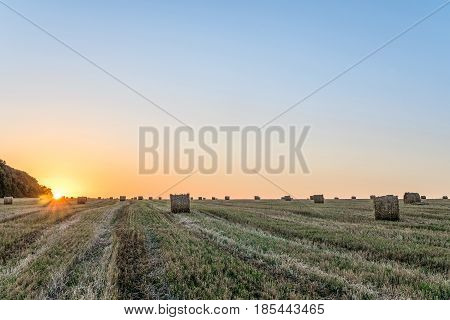 Wheat field after harvest with straw bale in light of the low evening sun backlight. Agriculture landscape with hay rolls on the sunset.