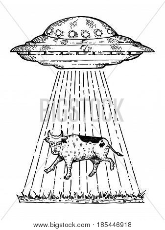 UFO kidnaps the cow engraving vector illustration. Scratch board style imitation. Hand drawn image.