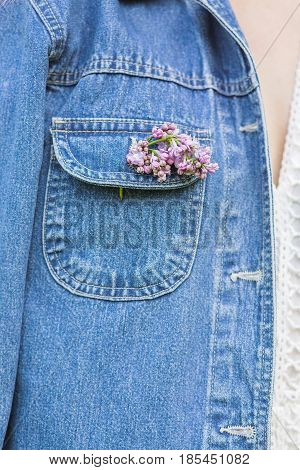 Lilac on a denim jacket. Lilac in the jacket pocket. Lilac
