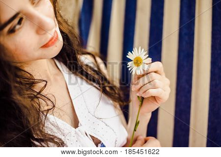 A girl holding a daisy in his hands on a summer day. Close-up view