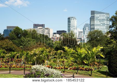 Boston Common Park Gardens with Boston Skyline