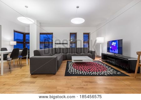 Living Room With Modern Furnishings