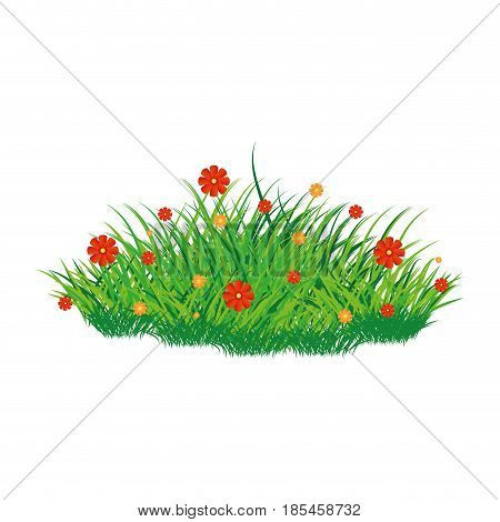 Isolated scrub whit flowers on a white background vector illustration