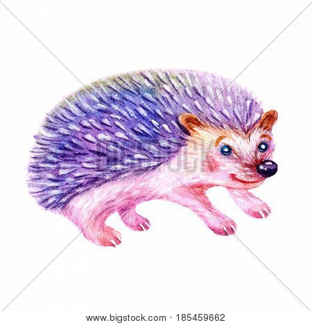 Cute watercolor cartoon hedgehog illustration isolated on white background. Hand painted greeting card with animal element. Vintage illustration with hedgehog