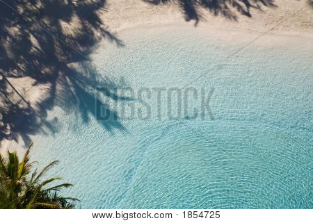 Palm Shade Over Tropical Lagoon