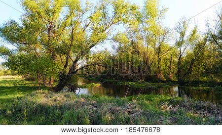 Evening on the river. Russian nature