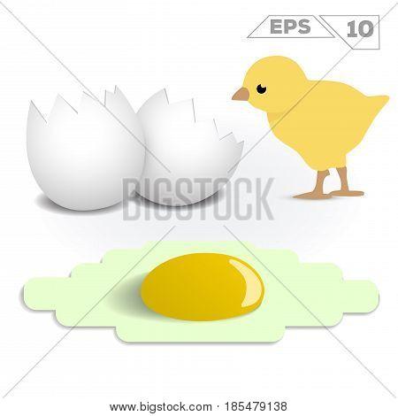 omelette fried eggshell and chick 3d vector illustration