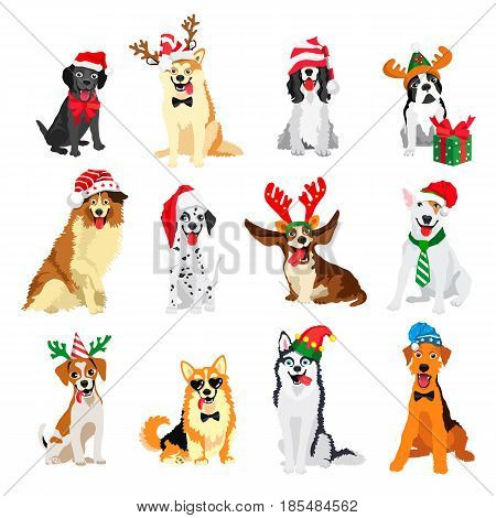 Set of 12 dogs of different breeds in New Year's hats. Vector illustration on white background. Friend of human. Symbol of the 2018