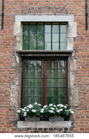 Wooden window with white flower pots in old brick building