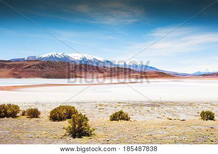 Landscapes Of Altiplano, Bolivia