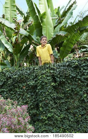 Hispanic boy leaning on ivy-covered wall