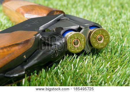 loaded gun for hunting is on the background of green grass