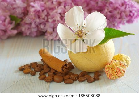 Coffee grains white flower still life background template. Vintage wooden table beans cinnamon flavor decoration.